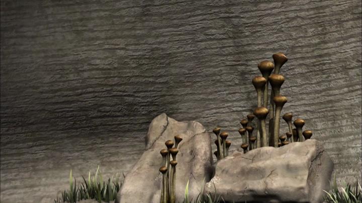 Enyo legendája 02 A kövek szelleme